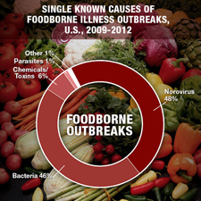 Graph of the causes of foodborne illness outbreaks.