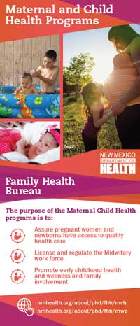 Banner graphic that explains the purpose of the maternal child health program.